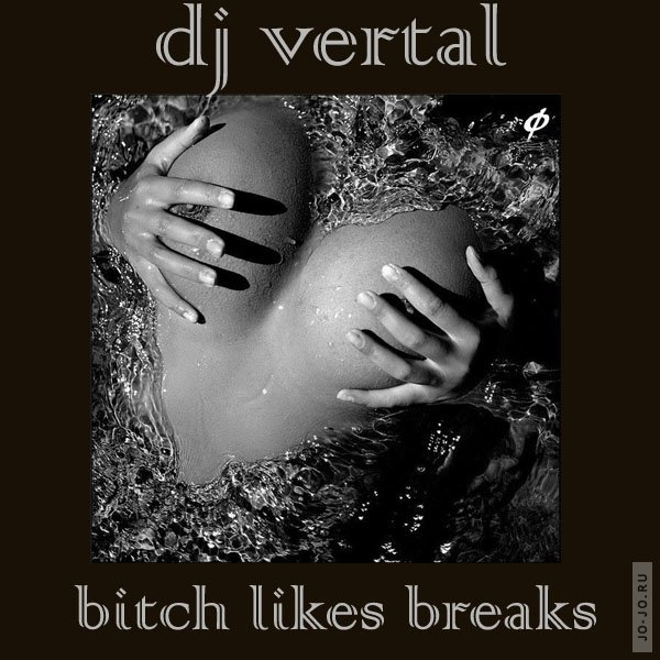 Bitch likes breaks (Mixed by Dj Vertal)