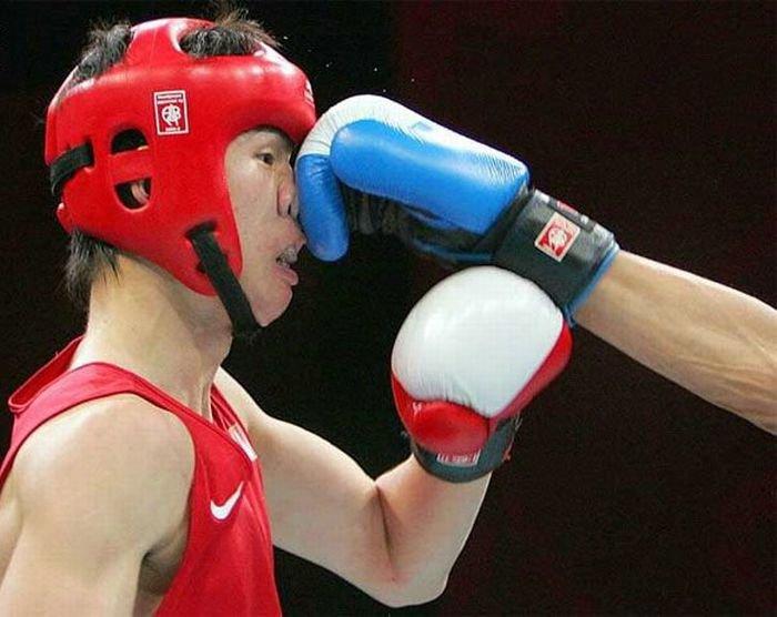 Смешные картинки боксер
