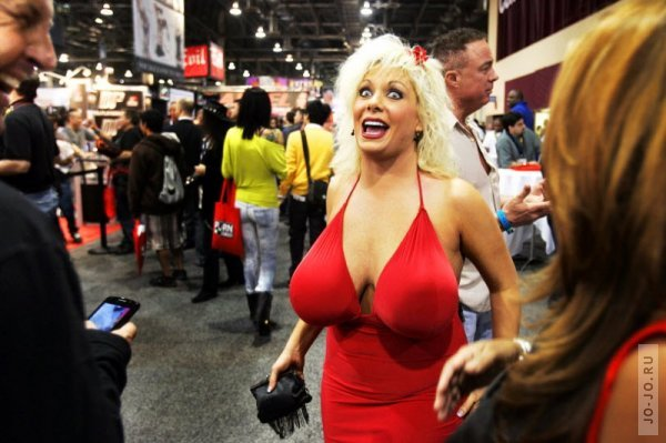 �������� �������������� Adult Entertainment Expo