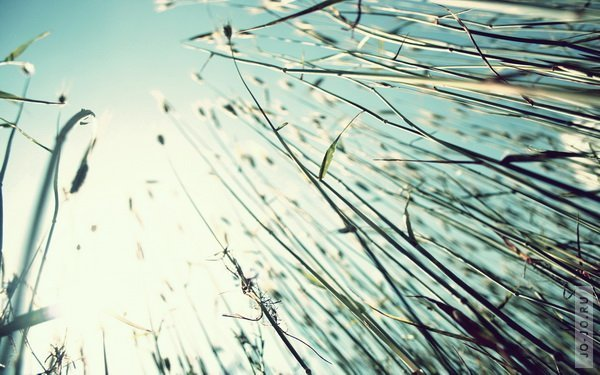 Beautiful HD Wallpapers. By Buster выпуск 38