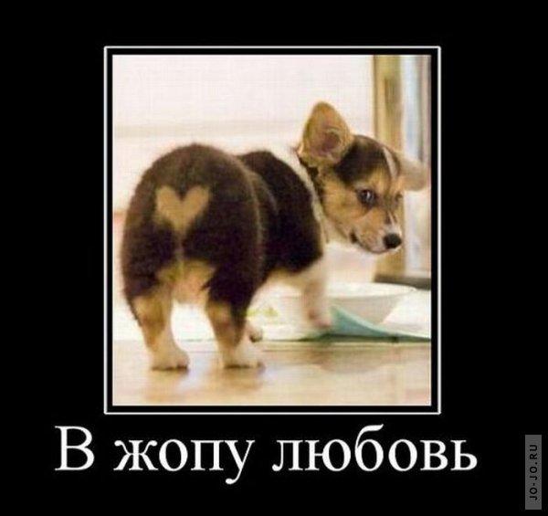 РОССИЯ. билетами можно воспользоватся в течении февраля, в любой день