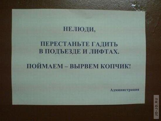 Смешные надписи в подъездах