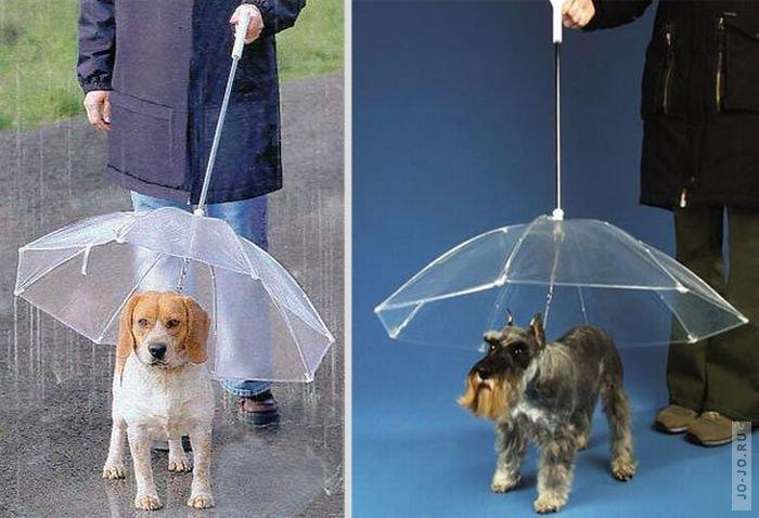 "Креативные зонтики "" SwTeam.info"