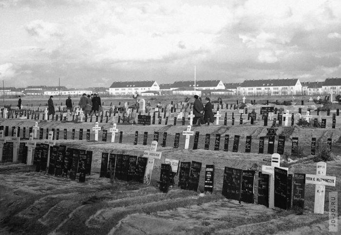 Последствия второй мировой войны