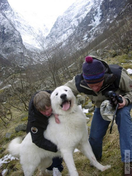 http://jo-jo.ru/uploads/posts/2012-09/thumbs/1347338815_radosti-lica-krasivye-fotografii-neobychnye-fotografii_2941918948.jpg