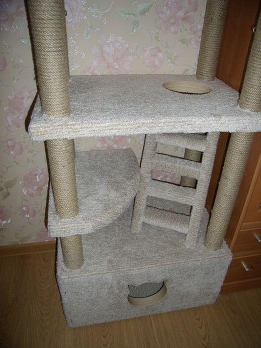 Дом для любимого кота - X-diagnostic