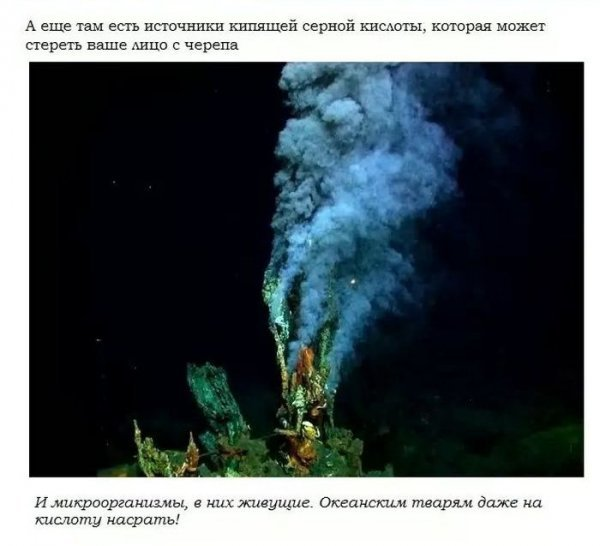Пугающие тайны подводных глубин