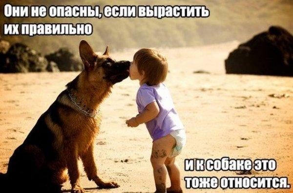 http://jo-jo.ru/uploads/posts/2014-04/thumbs/1396948515_podborka_18.jpg