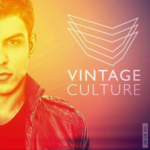 Vintage Culture - House Waves