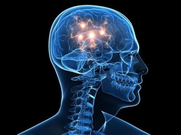Что такое память человека проза