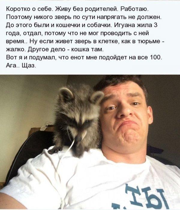 1404811355_enot_04.jpg