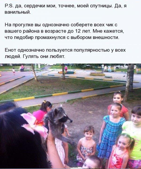 1404811412_enot_07.jpg