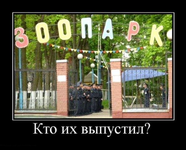 За сутки один мирный житель погиб и двое - ранены из-за обстрелов террористами Луганской области, - МВД - Цензор.НЕТ 4672
