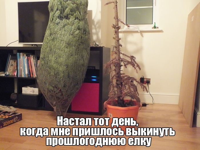 http://jo-jo.ru/uploads/posts/2015-12/1450419842_podborka_vecher_01.jpg