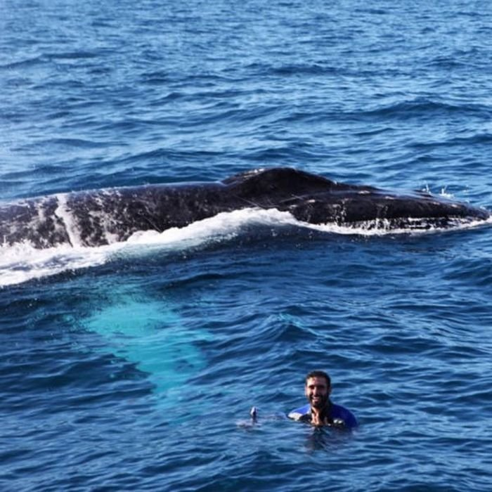 самое лучшее фото с китом на журнале моделью хочу продолжить