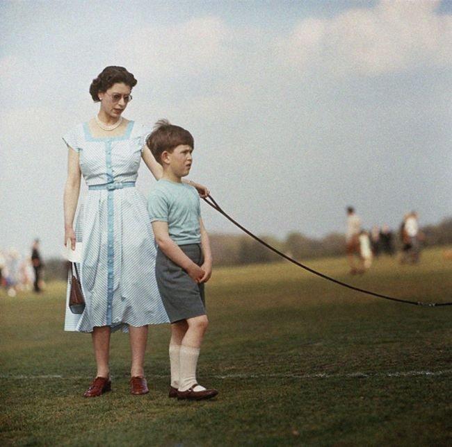социальных подборка редких фотографий со всего мира недавно рынок современных