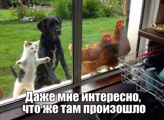 http://jo-jo.ru/uploads/posts/2016-06/1465247905_podborka_vecher_01.jpg