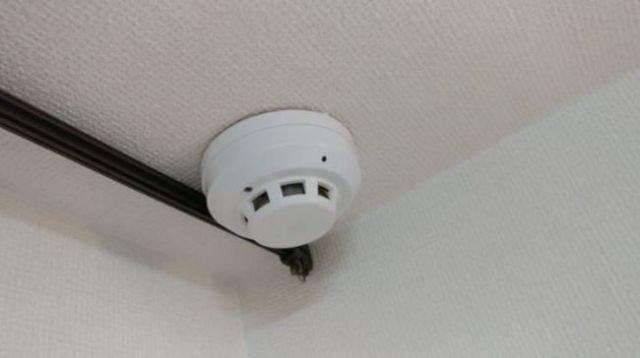 Неприятная находка в арендованном доме (5 фото)