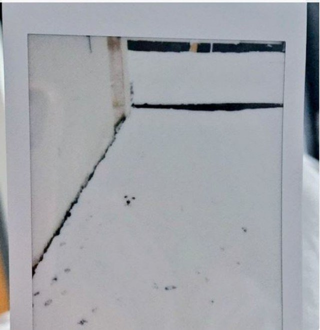 Присмотритесь еще раз: подборка неоднозначных фото (20 фото)