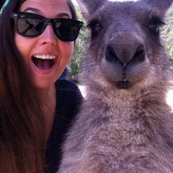 Странные и необычные фото с австралийских просторов (25 фото)