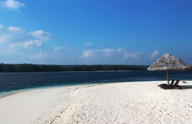 В Океании продается райский тропический остров (12 фото)