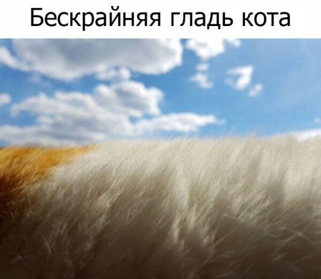 Подборка картинок (33 фото)