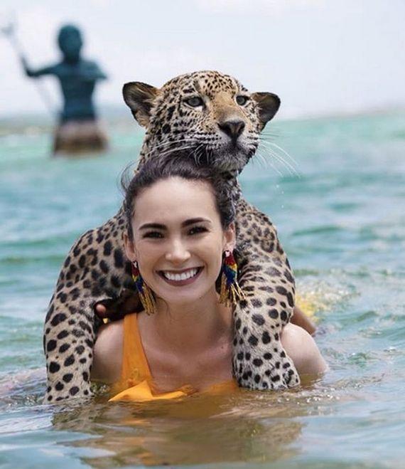 Купание с ягуарами в Карибском море (12 фото)