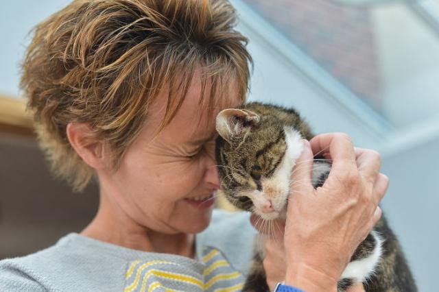 Кошка вернулась домой спустя 13 лет (8 фото)