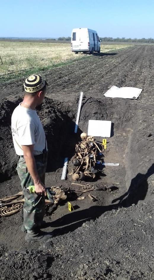 Трогательная картина во время раскопок (9 фото)