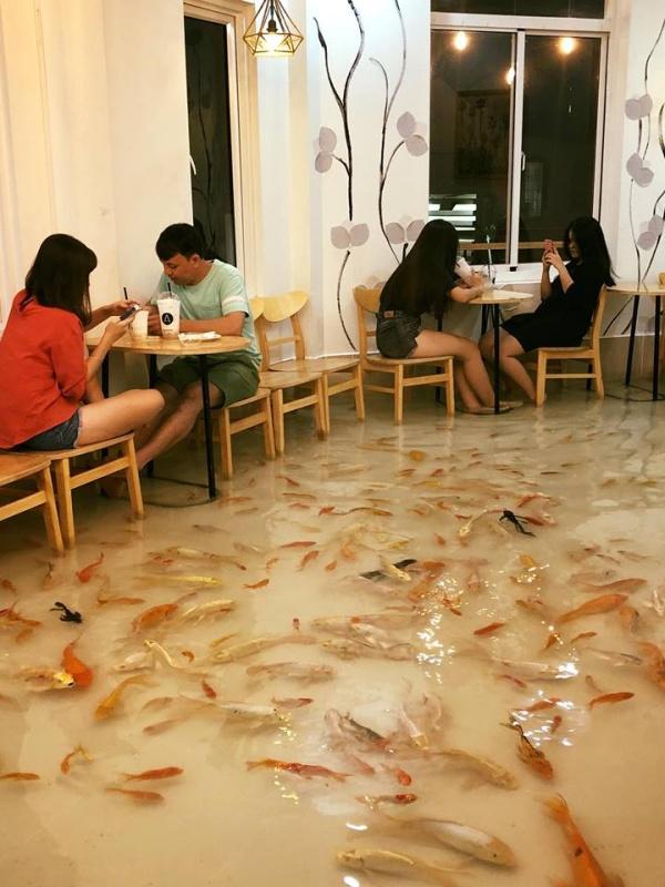 Необычное кафе во Вьетнаме (7 фото)