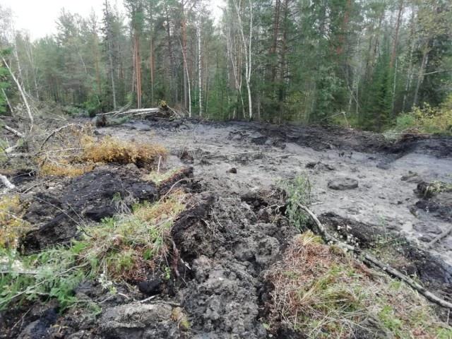 На Южном Урале проснулся грязевой вулкан (5 фото)