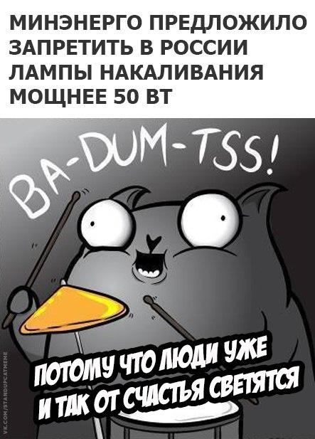 Подборка юмора и шуток от стендап-кота (23 картинки)