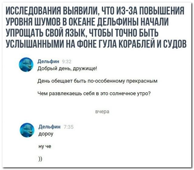 Шутки, высказывания и комментарии из социальных сетей (22 скриншота)