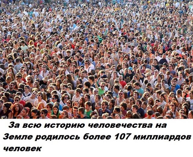 Бесполезные факты обо всем на свете (28 фото)
