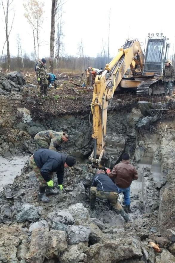 Обломки сбитого советского Ил-2 извлекли из земли в Эстонии (11 фото)