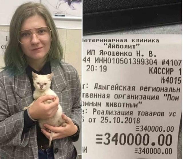 В Майкопе девушка решила финансовые проблемы приюта для животных (2 фото)