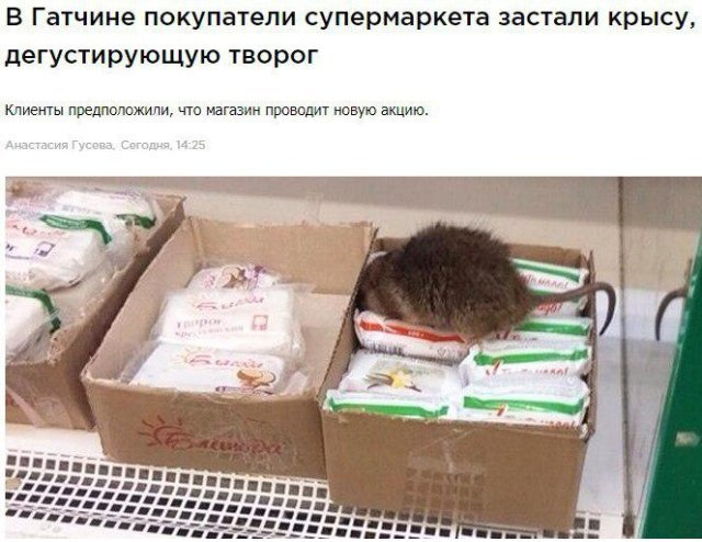 Странные новости со смешными заголовками (21 фото)