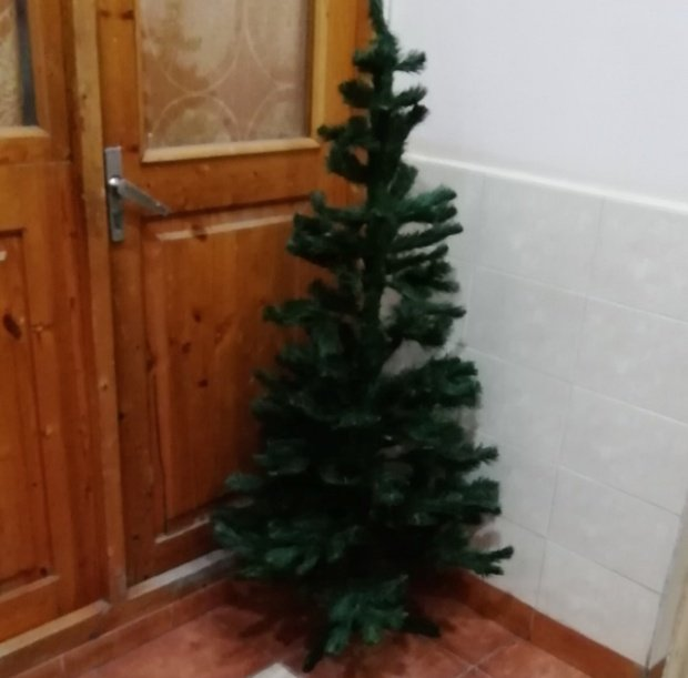 Новогоднее настроение, которое создают соседи (6 фото)