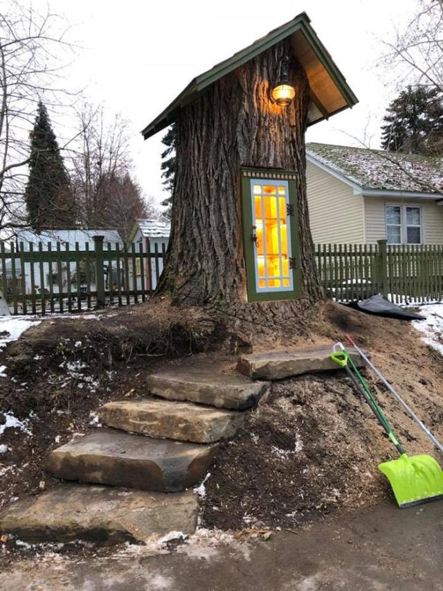 Перевоплощение старого 110-летнего дерева (11 фото)