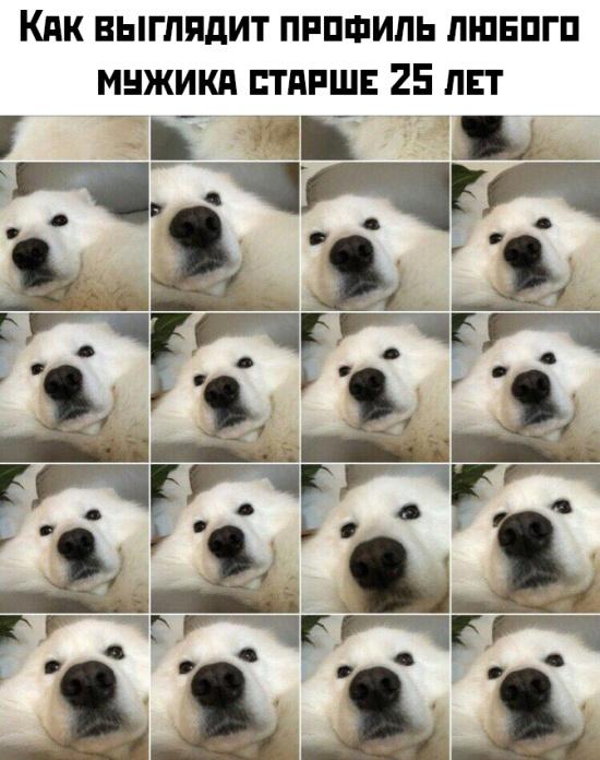 Подборка картинок (70 фото)