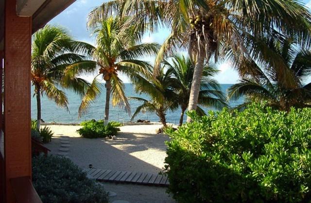Свой персональный тропический рай на острове (13 фото)
