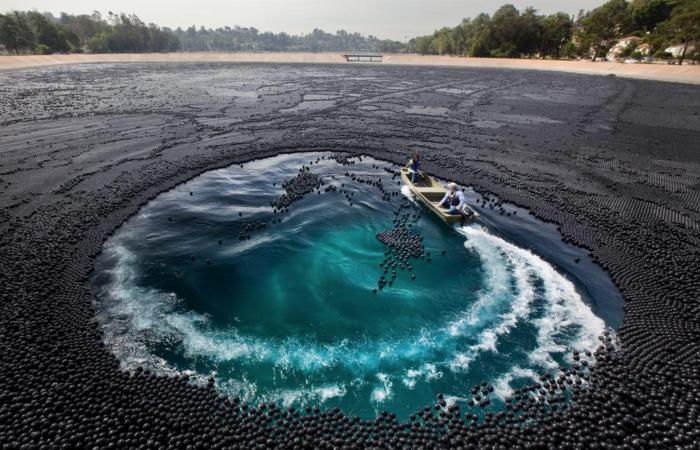 Зачем в водохранилище Лос-Анджелеса сбросили миллионы черных шаров
