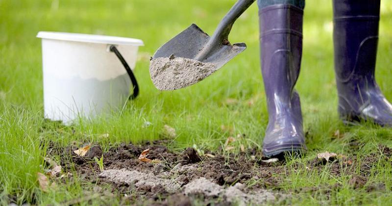 В США разрешили человеческие останки использовать в качестве удобрения